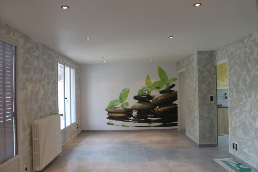 Macon murs plafond for Renover plafond abime